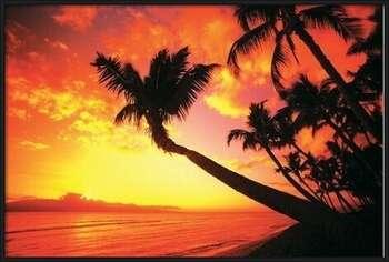 Plagát Hawaiin Sunset II