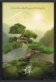 Zarámovaný plagát Zen