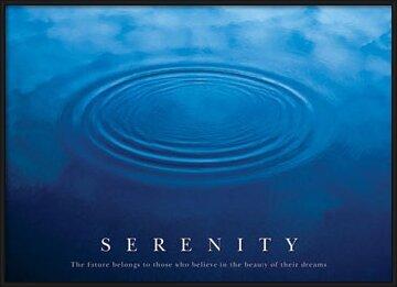 Plagát  Serenity - the future ...