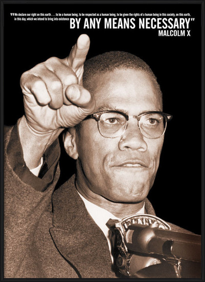 Plagát Malcolm X
