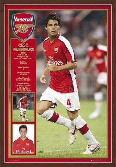 Plagát  Arsenal - Fabregas 08/09